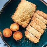 fried fish filet 2